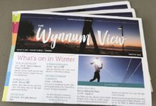 wynnum view