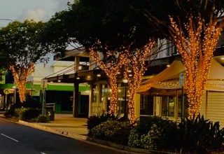 Photo of Have you seen the new tree lights in Wynnum Central?